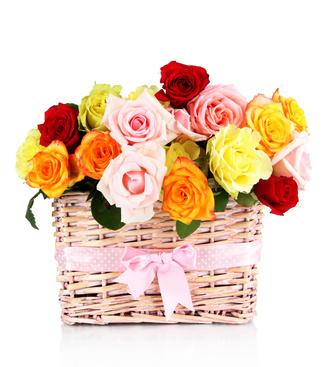 סלסילת פרחים 2212